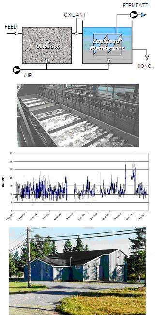 Advances in the application of membrane technology for iron and manganese removal from potable water